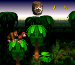 Donkey Kong Country SNES 072