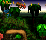 Donkey Kong Country SNES 073