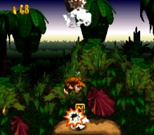 Donkey Kong Country SNES 078