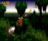 Donkey Kong Country SNES 081