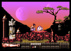 First Samurai Amiga 11