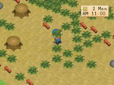 Harvest Moon PS1 021