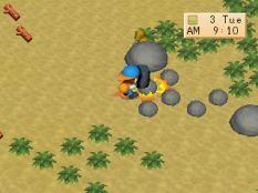 Harvest Moon PS1 044