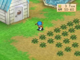 Harvest Moon PS1 045