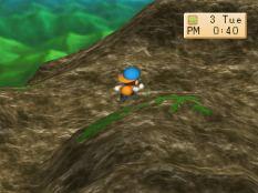 Harvest Moon PS1 054