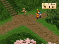 Harvest Moon PS1 066