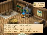 Harvest Moon PS1 073