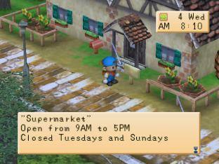 Harvest Moon PS1 078