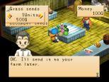 Harvest Moon PS1 080