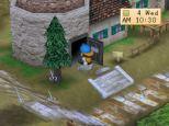 Harvest Moon PS1 085
