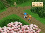 Harvest Moon PS1 106