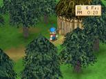 Harvest Moon PS1 126