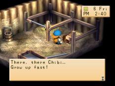 Harvest Moon PS1 131