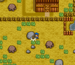 Harvest Moon SNES 004