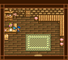 Harvest Moon SNES 032
