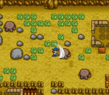 Harvest Moon SNES 039