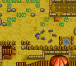 Harvest Moon SNES 040