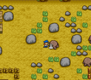 Harvest Moon SNES 042
