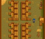 Harvest Moon SNES 046