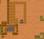 Harvest Moon SNES 052