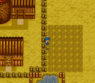 Harvest Moon SNES 056