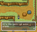 Harvest Moon SNES 061