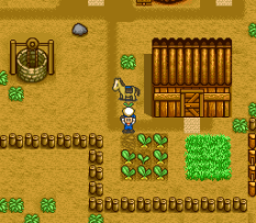 Harvest Moon SNES 076