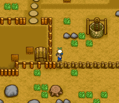 Harvest Moon SNES 077