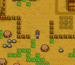Harvest Moon SNES 080