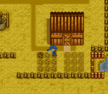 Harvest Moon SNES 090