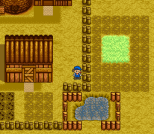 Harvest Moon SNES 092