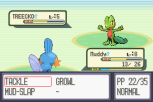 Pokemon Ruby Version GBA 013
