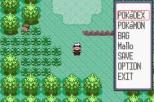 Pokemon Ruby Version GBA 015