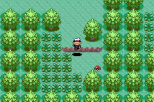 Pokemon Ruby Version GBA 037