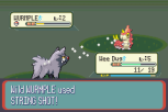 Pokemon Ruby Version GBA 040