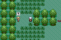 Pokemon Ruby Version GBA 054