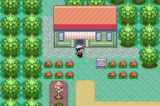 Pokemon Ruby Version GBA 056