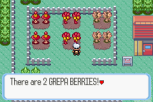 Pokemon Ruby Version GBA 095