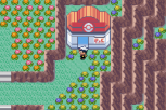 Pokemon Ruby Version GBA 140