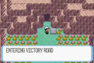 Pokemon Ruby Version GBA 141