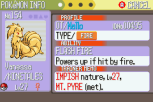 Pokemon Ruby Version GBA 217
