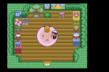 Pokemon Ruby Version GBA 223
