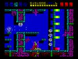 Rex ZX Spectrum 36