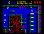 Rex ZX Spectrum 37