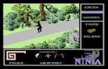 The Last Ninja C64 38