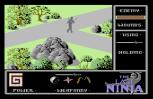 The Last Ninja C64 41