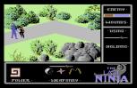 The Last Ninja C64 46