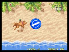 Windjammers Neo Geo 76