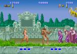 Altered Beast Arcade 13
