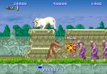 Altered Beast Arcade 26